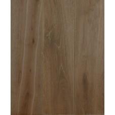 Staki Oak Chicory
